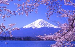 日本东京-大阪-京都-富士山-箱根7日游